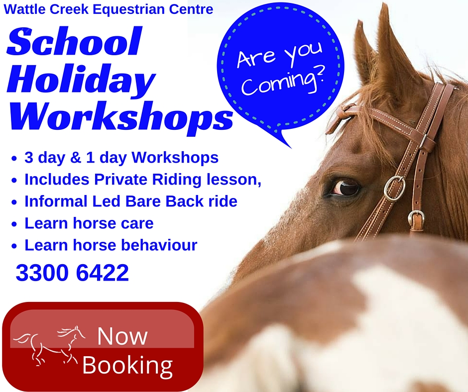 School Holiday Workshops(3)