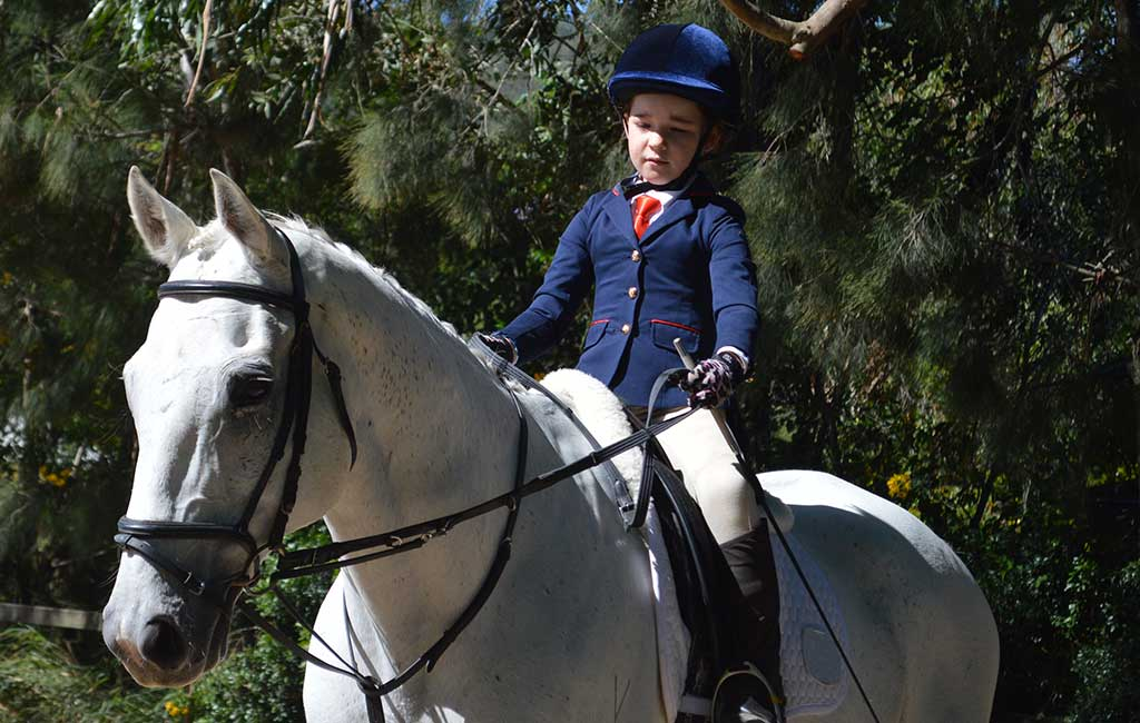 Wattle Creek Riding School Offering Horse Riding Lessons